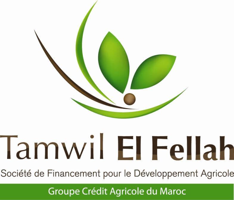 Tamwil El Fellah